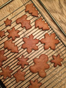 Guest Post by Annika: Chestnut Flour Gingerbreads